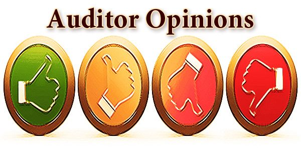What are Auditor Opinions- Zoefact