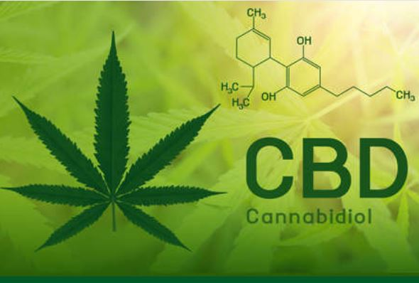CBD helps to determine cannabis as a legitimate product within the wellness market.