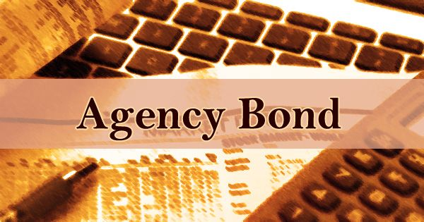 What is Agency Bond in Business- Zoefact